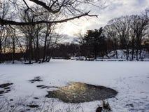 Lago congelato in inverno Fotografia Stock