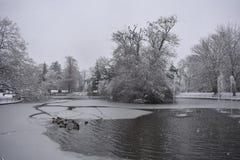 Lago congelato nei giardini di Jephson, stazione termale di Leamington, Regno Unito - 10 dicembre 2017 Fotografia Stock Libera da Diritti