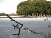 Lago congelato, neve, parco di Phoenix, Dublino, Irlanda, inverno Fotografie Stock