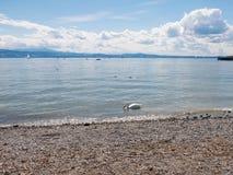 Lago Constance fotografía de archivo