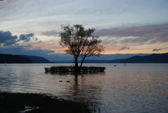 Lago Constance no por do sol Imagem de Stock Royalty Free