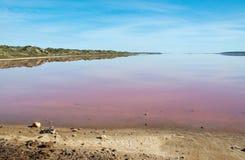 Lago cor-de-rosa imagem de stock royalty free