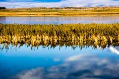 Lago-costa norte de Manasarovar Imagem de Stock