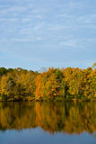 Lago crane Foto de archivo