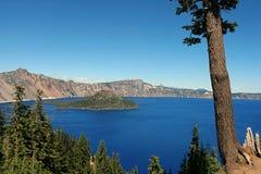 Lago crater, árbol Foto de archivo libre de regalías