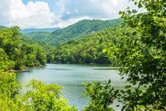 Lago creek do urso Imagem de Stock Royalty Free
