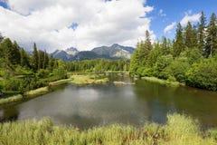 Lago cristallino fra il picco di montagna Immagini Stock Libere da Diritti