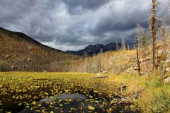 Lago Cub en Rocky Mountain National Park en septiembre fotos de archivo