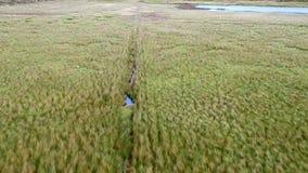 Lago Cuithir y Sgurr un Mhadaidh Ruadh - colina del Fox rojo, isla de Skye, Escocia almacen de metraje de vídeo