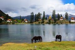 Lago Cuoka Imágenes de archivo libres de regalías