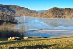 Lago cyanide en Geamana Rumania Imágenes de archivo libres de regalías