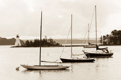 Lago D'Or dei reggiseni Immagine Stock Libera da Diritti