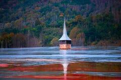 Lago da água da poluição Imagem de Stock Royalty Free