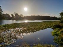 Lago da beleza foto de stock