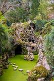 Lago da cachoeira foto de stock