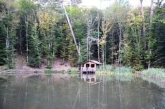 Lago da casa e da floresta Fotografia de Stock