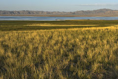 Lago Da-Chaidan Immagini Stock