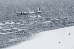 Lago da cisne de Rongcheng Fotos de Stock Royalty Free