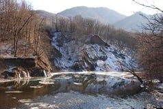 Lago da floresta da montanha Imagens de Stock