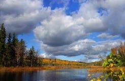 Lago da floresta do outono Fotos de Stock Royalty Free