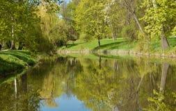 Lago da mola da paisagem, árvores, grama imagem de stock royalty free