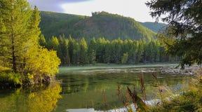 Lago da montanha de Altai da montanha Fotos de Stock Royalty Free