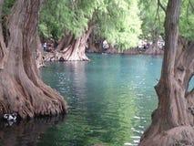 lago da vista Fotos de Stock Royalty Free