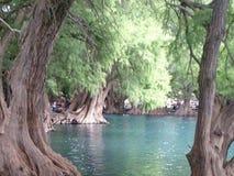 lago da vista Fotografia de Stock Royalty Free