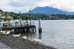 Lago da ZM em Zurique 1 foto de stock