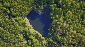 Lago dado forma coração no meio da floresta fotos de stock