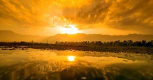 Lago Dal, Cachemira, la India fotografía de archivo libre de regalías