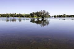 Lago dam di Alqueva Confisca il fiume Guadiana Fotografia Stock