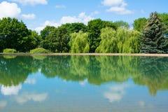 Lago das árvores da paisagem Fotos de Stock