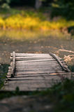 Lago das madeiras foto de stock