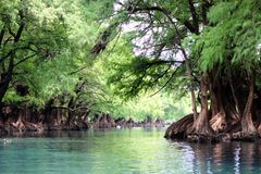 Lago De Camecuaro obrazy stock