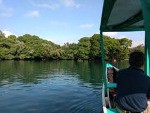 Lago de Camecuaro стоковое изображение rf
