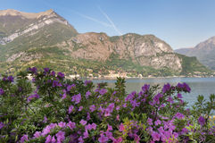 Lago de Como foto de stock royalty free