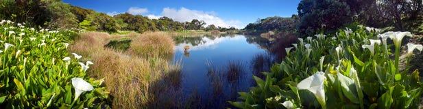 Lago de de l'Eau do Piton Foto de Stock Royalty Free
