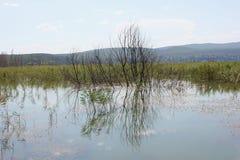 Lago de Doirani Kilkis Grécia foto de stock