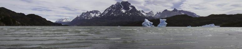Lago de Grey con gli iceberg, Torres del Paine, Cile Fotografia Stock Libera da Diritti
