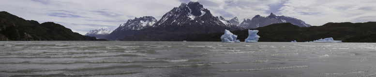 Lago de Grey with icebergs, Torres del Paine, Chile Royalty Free Stock Photo