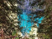 Lago de la montaña de Kaindy en Kazajistán Natural, bosque Fotos de archivo