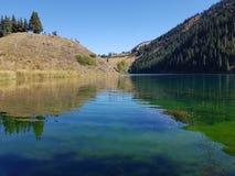 Lago de la montaña de Kaindy en Kazajistán Natural, bosque Foto de archivo libre de regalías