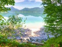 Lago de la montaña de la primavera con la reflexión y la rama Dar une vuelta de la mañana Foto de archivo