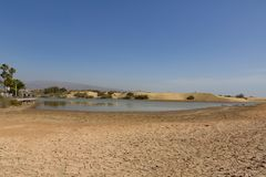 Lago de la reserva de naturaleza de Charca del La al lado de las dunas de arena en Maspalom foto de archivo