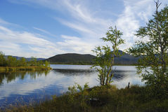 Lago de madeira Imagens de Stock Royalty Free