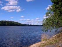 Lago de madeira Fotografia de Stock Royalty Free