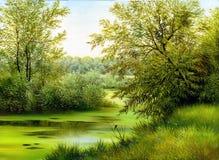 Lago de madera Imagen de archivo libre de regalías