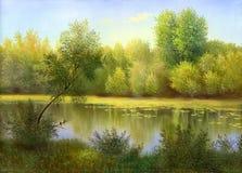Lago de madera fotografía de archivo