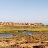 Lago de oro imagen de archivo